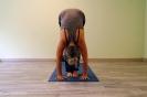 Yogaunterricht Mittelstufe_120